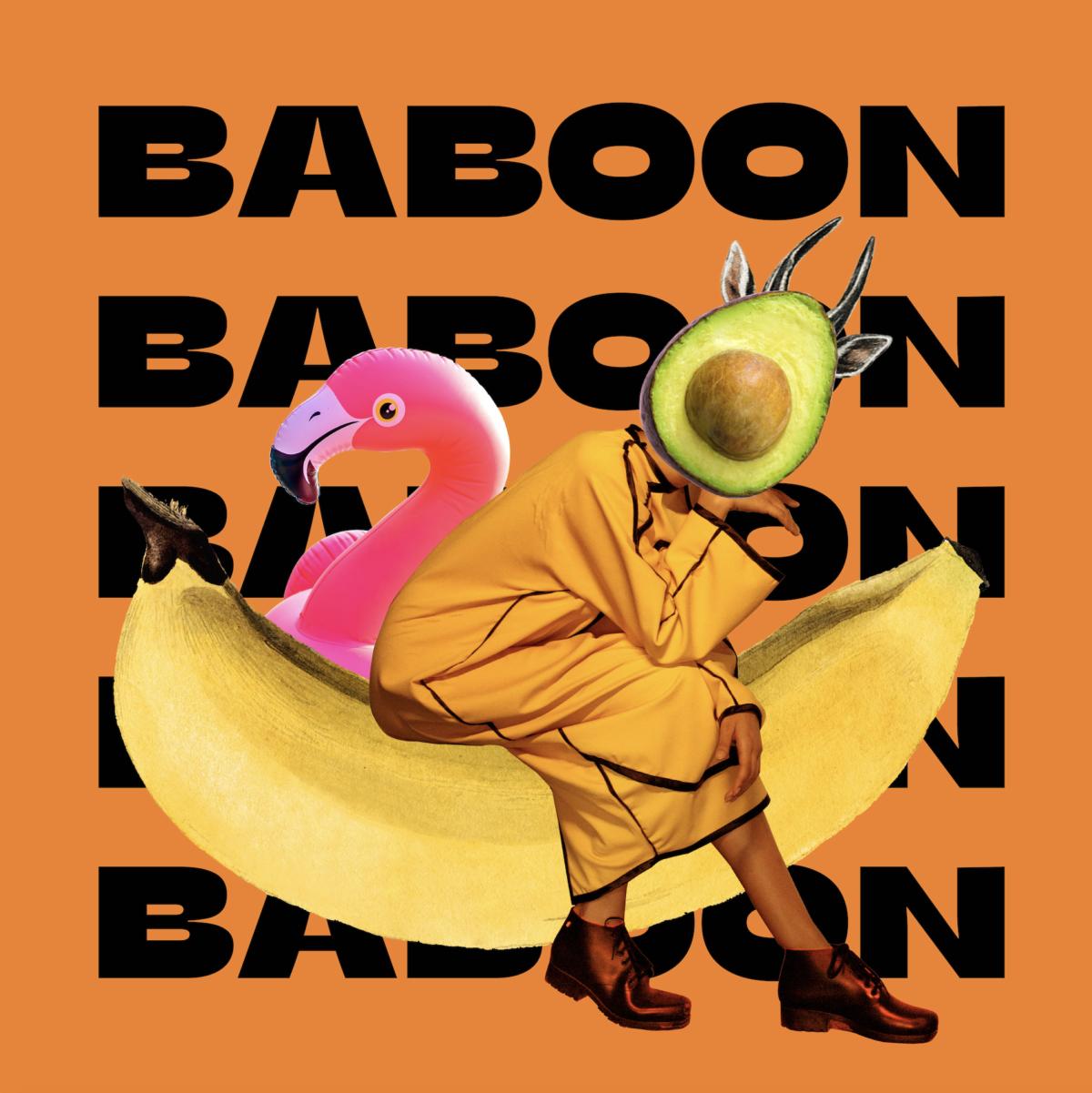 BABOON HEALTHY FOOD IDENTITY